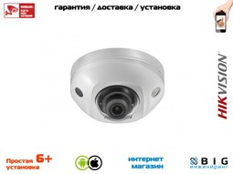 № 100071 Купить DS-2CD2523G0-IWS Томск