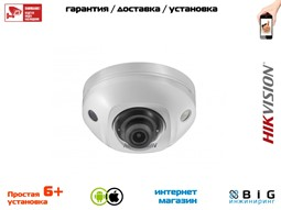 № 100074 Купить DS-2CD2543G0-IS Томск